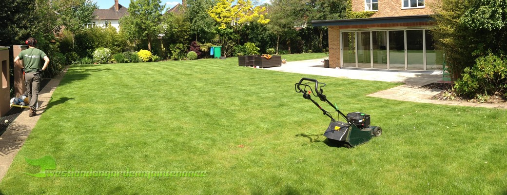 Richmond gardener and garden maintenance