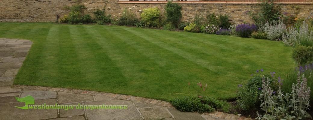 Garden Maintenance Services Ealing