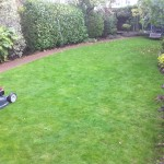 twickenham garden services