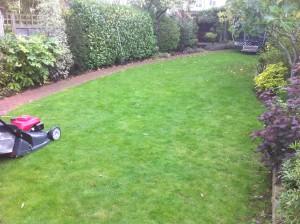 Twickenham gardening servicves
