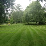 Kensington and Chelsea garden maintenance